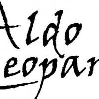 fernando-arciniega-logotipos-econocmicos-baratos-CDMX-DF-aldo leopardi
